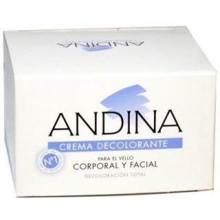 ANDINA CREMA DECOLORANTE GRANDE 80 G.