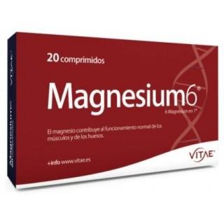 MAGNESIUM 6 20 COMPRIMIDOS